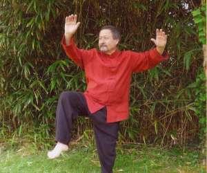 Tai chi chuan, qi gong
