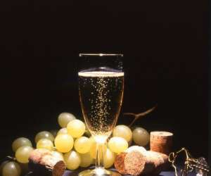 Champagne direct producteurs et vins