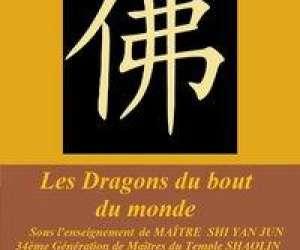 Les dragons du bout du monde