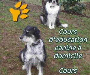 Educ.canine