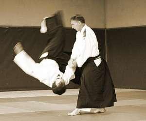Aikido club  malansac