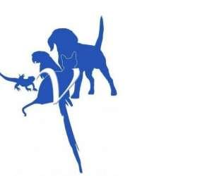 Clinique vétérinaire copernic vannes