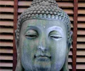 Instant zen-gandhali