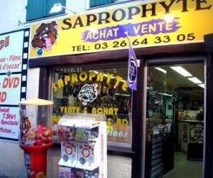 Saprophyte