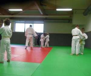 Judo jujitsu taiso sel-defense  douzy