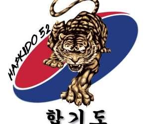 Hapkido - taekwondo - chaumont 52