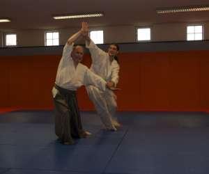Ecole de pratique et developpement du kinomichi