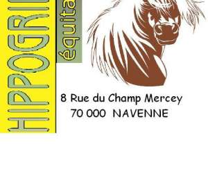 Sellerie hippogriffe equitation