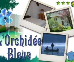 Orchidee  bleue -  location gîtes