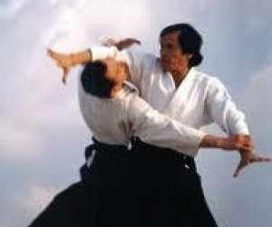 Buc aikido   franche - comte