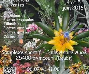 Floralies comtoises