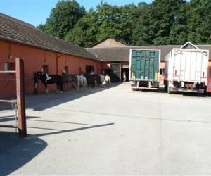 Centre omnisports pierre croppet ecole equestre