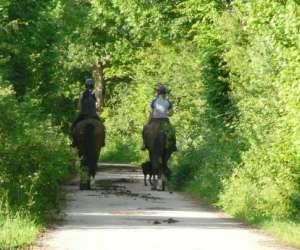 Jv equitation