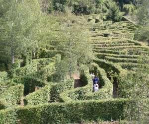 Jardin fantastique  -   labyrinthe végétal