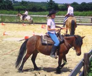 Country pony ranch
