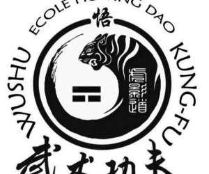 Kung fu wushu hu ying dao
