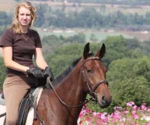 Centre equestre du montcelet