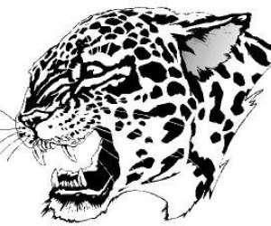 Cougar sécurité privé