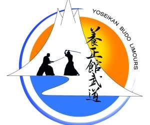 Yoseikan budo limours