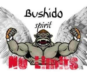 Mma bushido spirit