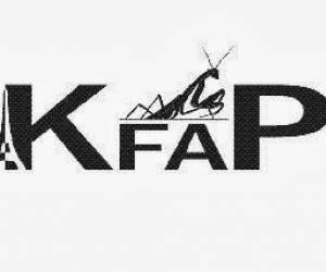Kfap - kung fu a paris