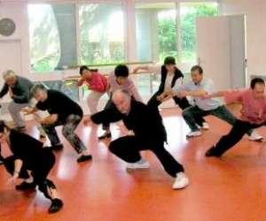 Cours de tai chi chuan, chi gong, méditation de saint c