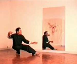 Academie des arts martiaux de chine - cours kungfu taic
