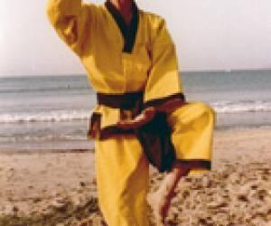 Eqimonie kung-fu