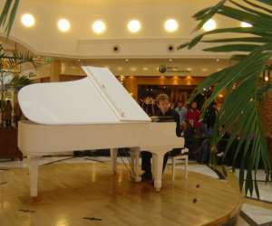 Animation piano pour evenements