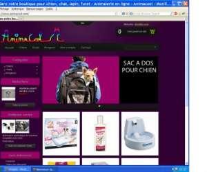 Animacool.com  - tout pour chiens,  chats et rongeurs