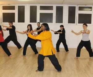 Association paris kung-fu - taichi et qigong