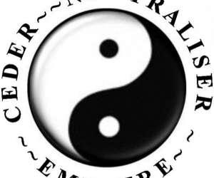 Pratique et etude du tai chi chuan