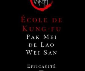 Lws pak mei - ecole de kung fu a paris