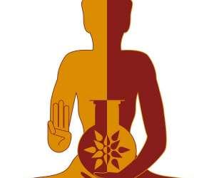 Yogsansara / formation yoga et  ayurvéda
