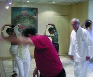Qi dao les arts du qi