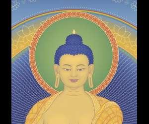 Centre bouddhiste kadampa shakyamouni - le cmk de paris
