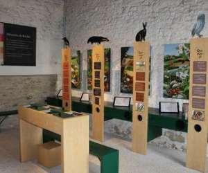 Musée du vexin français