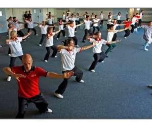 Dragon bleu arts martiaux chinois