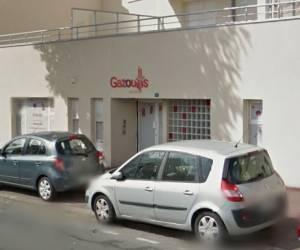 Gazouillis