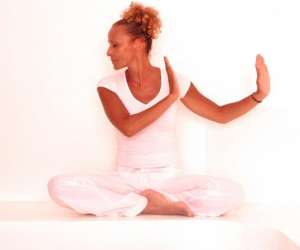Dao yin yoga - joyce benoist