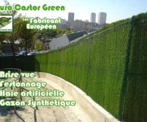 Euro castor green