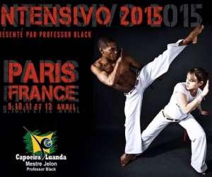 Capoeira luanda paris