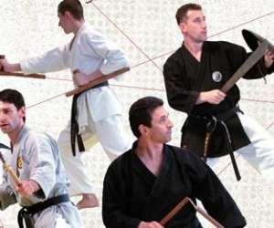 École d'arts martiaux frédéric méjias  - budoryu
