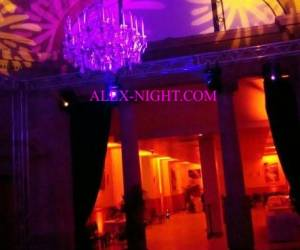 Alex night