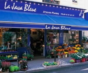 Atelier java bleue