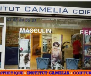 Institut esthétique camélia