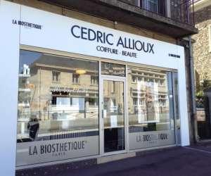 Cédric allioux csbi