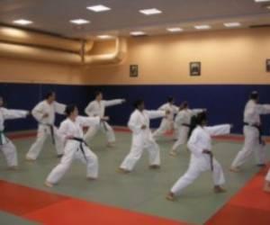 Ecole parisienne de karate
