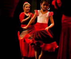 Flamenco en france