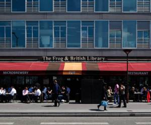 The frog  british library
